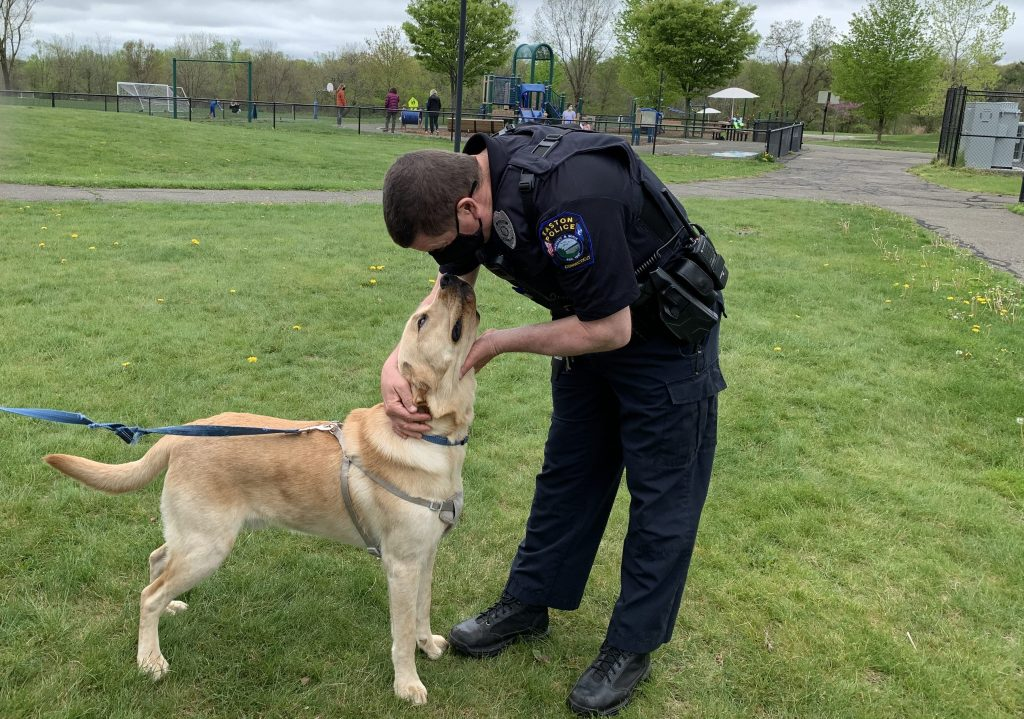 A friendly dog greets an Easton officer at the May 4 referendum. — Jane Paley Photo